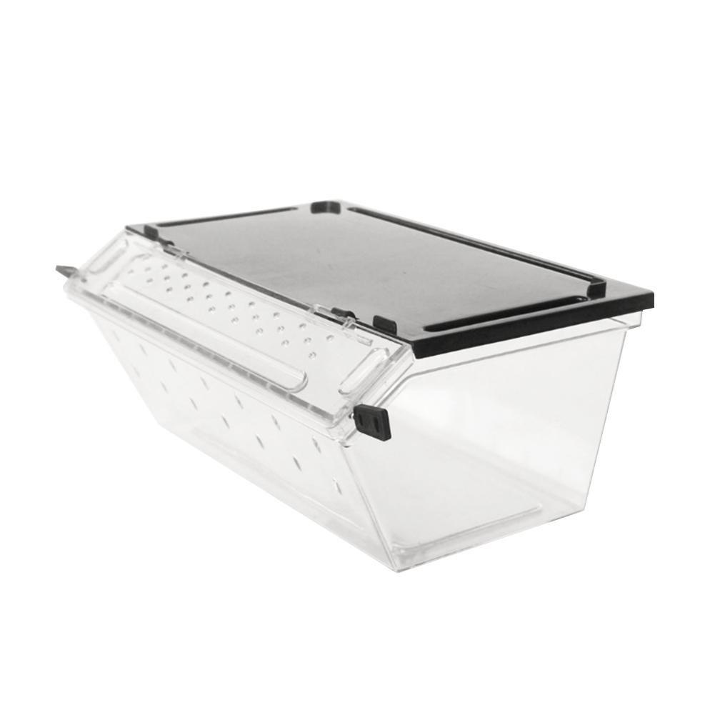 Welltobuy Transparent box rettile allevamento insetti vivi contenitore in plastica per alimenti Feeding box Snake Spider Lizard Scorpion Welltobuy-555