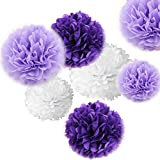 Sorive 12pcs Premium Tissue Paper Pom Pom Flowers Craft Kit - Rustic Purple and White