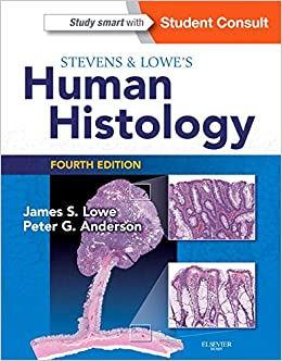 Image result for histology stevens and lowe