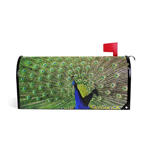Peacock Print Mailbox Covers Magnetic Standard Size Mail Boxes Makeover Mail Wraps Cover Letter Post Box