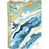 "bloom daily planners 2018 Calendar Year Daily Planner - Passion/Goal Organizer - Monthly and Weekly Datebook and Calendar - January 2018 - December 2018-6"" x 8.25"" - Geode"