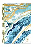 bloom daily planners 2018 Calendar Year Daily Planner - Passion/Goal Organizer - Monthly and Weekly Datebook and Calendar - January 2018 - December 2018-6'' x 8.25'' - Geode