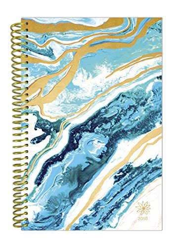 """bloom daily planners 2018 Calendar Year Daily Planner - Passion/Goal Organizer - Monthly and Weekly Datebook and Calendar - January 2018 - December 2018 - 6"""" x 8.25"""" - Geode"""