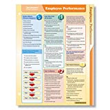 ComplyRight Fast Answers Quick Reference Cards: Employee Performance (D0784AMZ)
