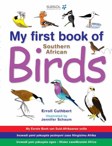 My First Book of Southern African (Black Headed Duck)