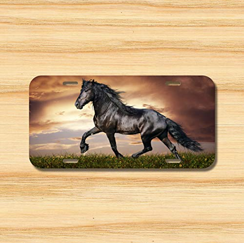 (Yilooom Horse License Plate Front Vehicle Auto Tag Dressage Pony Clydesdale !! Novelty Accessories License Plate Art)