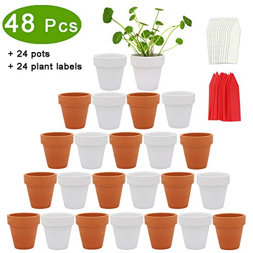 - PETUOL 24 Small Mini Clay Pots, 2.6inch Tiny Terracotta Pots Clay Ceramic Pottery Planter Cactus Flower Pots Succulent Nursery Pots - Great for Indoor/Outdoor Plants, Wedding Favor, Crafts