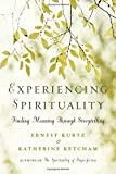 img - for Experiencing Spirituality: Finding Meaning Through Storytelling book / textbook / text book
