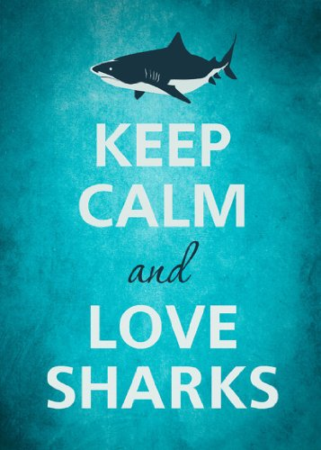 - Rectangle Refrigerator Magnet - Keep Calm and Love Sharks Great White