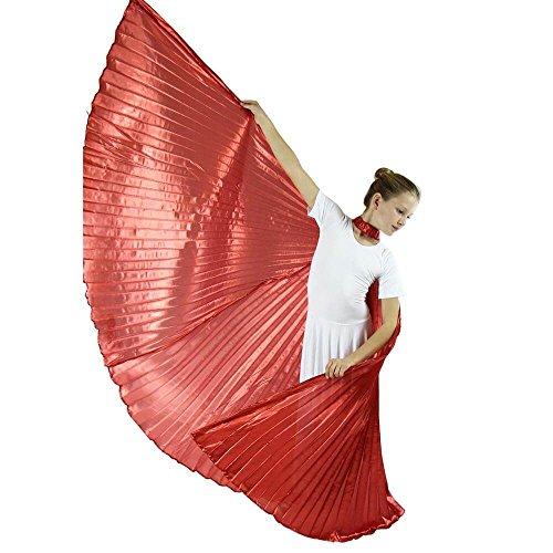 Danzc (Angel Fancy Dress Costumes)