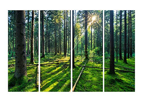PulsatingFingertip-4 panel unframed forest and sunrise sunlight oil painting green Tree woods canvas print Modern Wall Art Home Decoration No Frame