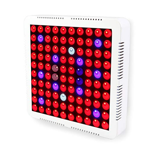 Led Coral Grow Lights in US - 6