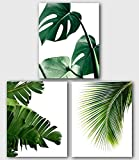 Monstera, Banana, Palm Leaf Prints, Set Of 3, Tropical Palm Leaves, 8 x 10 Inches, Unframed