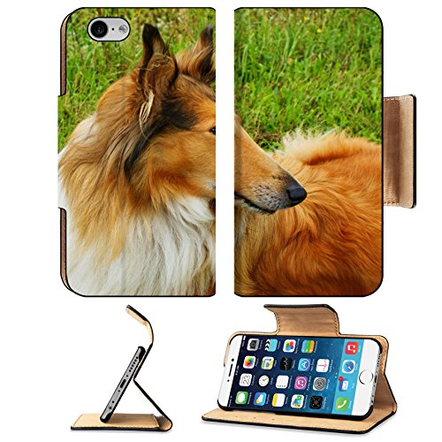 Liili Premium Apple iPhone 6 iPhone 6S Flip Pu Leather Wallet Case IMAGE ID: 18794069 Portrait of sable and white Long haired Rough Collie dog