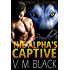Freed and Finale Bundle: The Alpha's Captive BBW/Werewolf Paranormal Romance #6-7 (The Alpha's Captive BBW/Werewolf Paranormal Romanc Boxset Book 3)