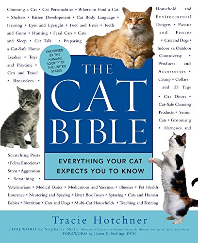 The Cat Bible: Everything Your Cat Expects You to Know (Best Food For Cats With Kidney Problems)