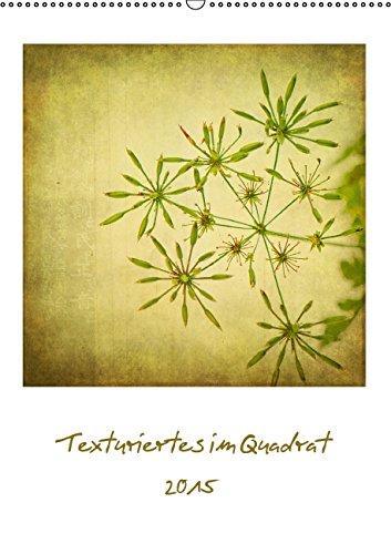 texturiertes-im-quadrat-2015-author-doktor-frau