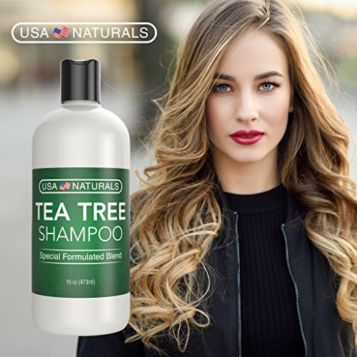 Tea Tree Oil Shampoo Sulfate-Free: Revitalize Hair, Combat Hair Loss and Cleanse Scalp with Naturally-Sourced Ingredients - Pure Tea Tree Oil, Organic Argan Oil, Organic Green Tea (Tea Tree Shampoo) by USA Naturals (Image #3)