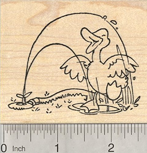 Spring Duck Rubber Stamp, Playing in Sprinkler Spray