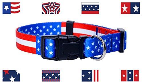 Native Pup American Collar Medium product image