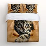 Libaoge 4 Piece Bed Sheets Set, Lovely Baby Cat Print, 1 Flat Sheet 1 Duvet Cover and 2 Pillow Cases
