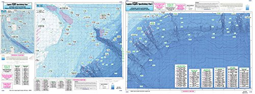 Bathymetric Canyon, Atlantic to Toms Canyon - Laminated Nautical Navigation & Fishing Chart by Captain Segull's Nautical Sportfishing Charts | Chart # AT206]()
