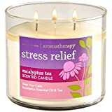 Bath and Body Works 3-wick Limited Edition Candle AROMATHERAPY COLLECTION (Stress Relief - Eucalyptus Tea)