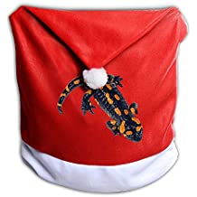 Santa Clause Red Hat Chair Back Covers For Christmas Dinner Decor Judian New Hampshire Mascot Spotted Salamander Foraging