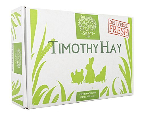 - Small Pet Select 2nd Cutting Timothy Hay Pet Food, 10-Pound
