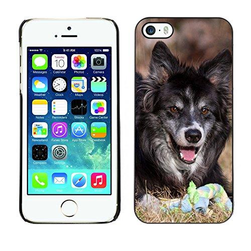 Premio Sottile Slim Cassa Custodia Case Cover Shell // F00010276 Loup chien // Apple iPhone 5 5S 5G