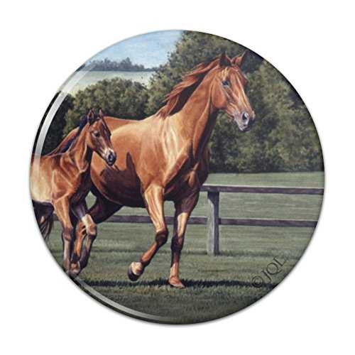 Pin To Foal - Mother Horse and Foal Baby Fresh Start Pinback Button Pin Badge - 1