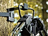 BWD Crossbow Hanger - ON Your Tree in Seconds - The ONLY Crossbow Hanger Legal to USE ON All State and Federal Lands