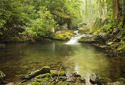 Laeacco 10x6.5ft Forest Stream Scenic Backdrop Vinyl Lush Forest Rapid Stream River Mossy Rocks Greenery Wood Photography Background Summer Scenic Child Baby Adult Shoot Summer Landscape