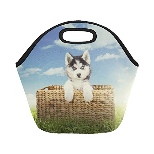 InterestPrint Cute Husky Dog Basket Reusable Insulated Neoprene Lunch Tote Bag Cooler 11.93