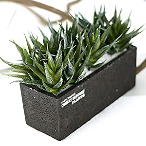 5 pcs Artificial Succulents Aloe Vera Flower Real-Like Mini Artificial Green Plants for Living Room Bedroom Home Garden Party Decor Indoor Decoration, Vase Not Included 2