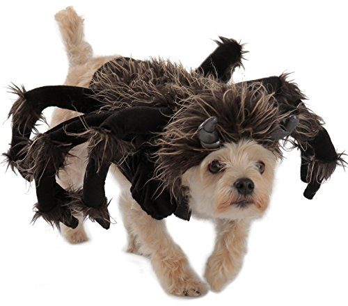 Tarantula Costumes For Dog (Princess Paradise Tarantula Dog Costume, Black, Medium)