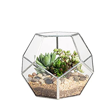 NCYP Silver Clear Glass Dodecahedron Geometric Terrarium Globe Planter Container Indoor Fairy Garden Pot Centerpiece for Succulent Air Plants Wedding Coffee Table (No Plants)