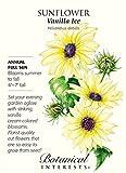 """Vanilla Ice"" Sunflower Seeds By Botanical Interests"