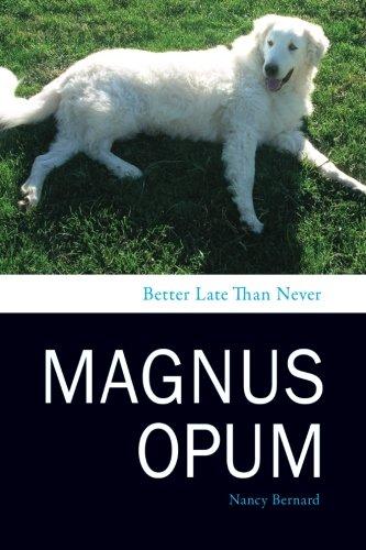 Magnus-Opum-Better-Late-Than-Never