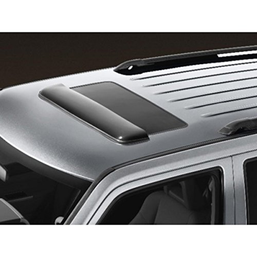 OEM Chrysler Town Country Moon Sunroof Bug Guard Air Deflector (Chrysler Pacifica Bug)