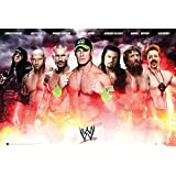WWE - Collage Poster 36 x 24in