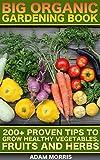Better Homes & Gardens Indoor Plants - Best Reviews Guide