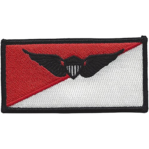 Cavalry Air Pilot Wings Name Tag Patch ()