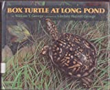 Box Turtle at Long Pond, William T. George, 0688081851