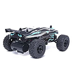 KingPow RC Car 1/24 Scale 2WD Remote Control Cars With 2.4 Radio Controlled Electric Rc Truck Off-road for Kids