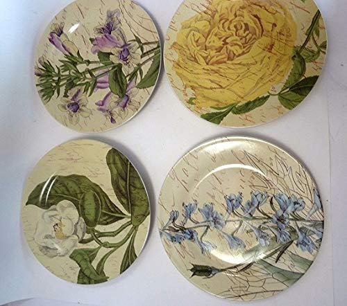 - Pier 1 Imports Botanical Plate Set (4) in Gift Box