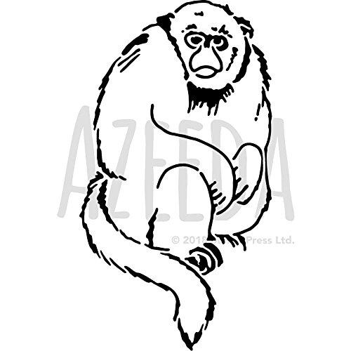 d Monkey' Wall Stencil / Template (WS00025651) ()