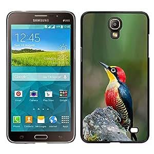 EJOY---Cubierta de la caja de protección para la piel dura ** Samsung Galaxy Mega 2 ** --primavera naturaleza verde pájaro cantante tropical