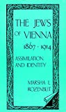 img - for The Jews of Vienna, 1867-1914: Assimilation and Identity (Suny Series in Modern Jewish History) book / textbook / text book