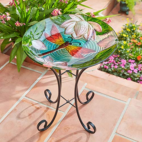BrylaneHome Dragonfly Painted Glass Birdbath - ()